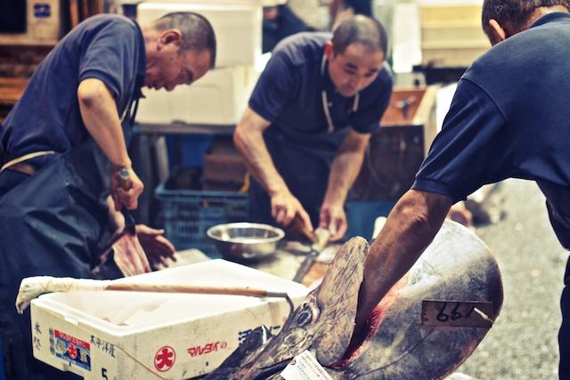Fischmarkt Tokio Thunfisch